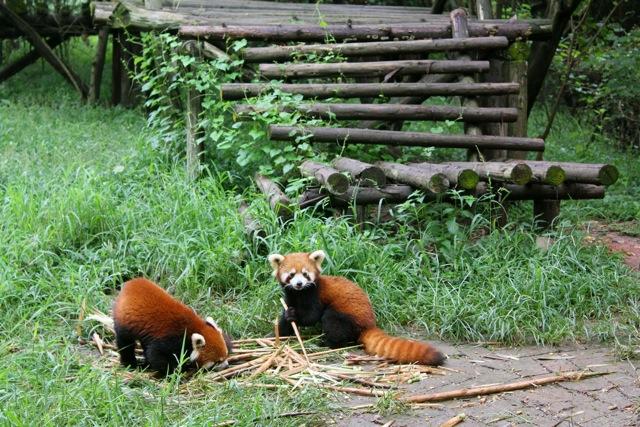 Pandas_07
