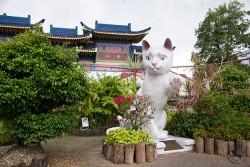 Kuching Cat Statues