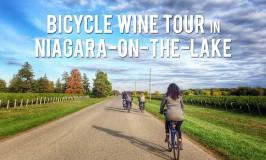 Bicycle Wine Tour in the Niagara Region