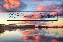 2015 Year in Review Seeyousoon.ca