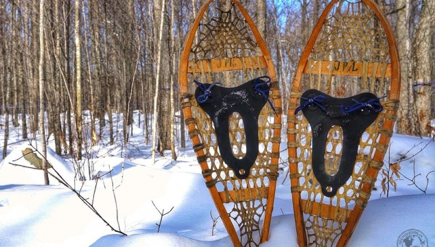 Where to snowshoe in Ontario