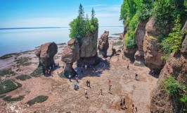 Hopewell Rocks Low Tide