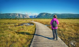 Hiking trails in Gros Morne National Park