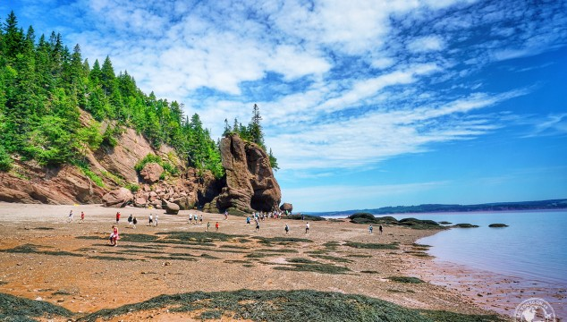Bay of Fundy and the Hopewell Rocks