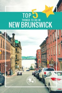 Check out the top 5 things to do in New Brunswick!